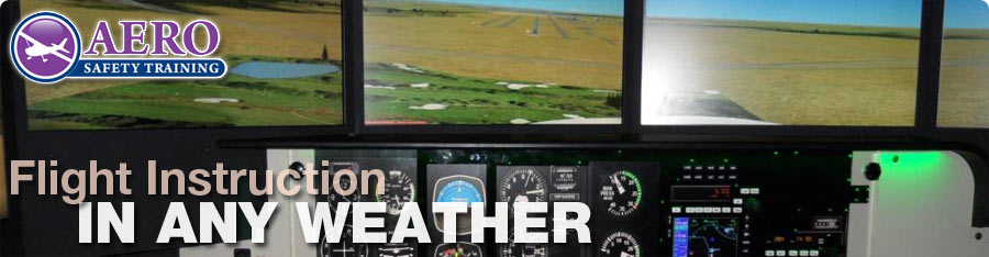 Flight School Redbird Flight Simulator